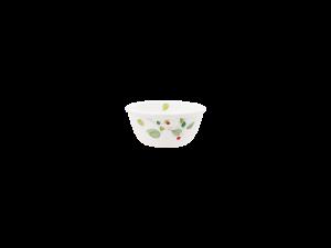 コレール グリーンブリーズ 小鉢J406-GB